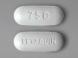 Levaquin Antibiotic